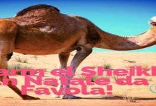 Annullamento viaggio Balkan Express a Sharm El Sheikh – i diritti dei viaggiatori e dei turisti